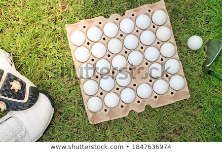 Golf balls in paper carton for eggs Stock photo © CaptureLight