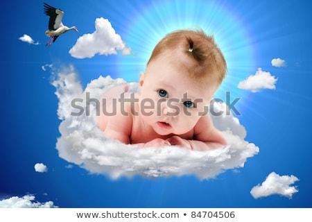 Storch Baby weiblichen rosa Karikatur Geburt Stock foto © adrenalina