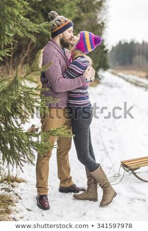 小さな キス 冬 森林 クリスマス 愛 ストックフォト © Kor