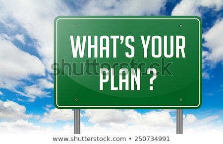 What's Your Plan on Green Highway Signpost. Stock photo © tashatuvango