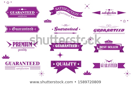 Garantie garantir sceau violette vecteur bouton Photo stock © rizwanali3d