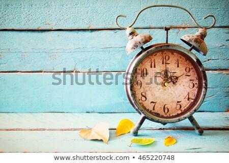 Vintage alarm clock in dry autumn leaves Stock photo © stevanovicigor