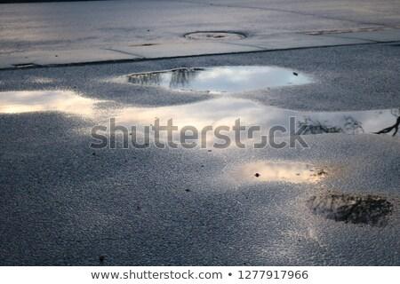 утра пейзаж сельский дороги мороз Сток-фото © Kotenko