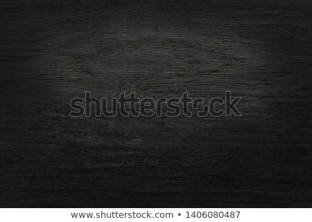 Enfeitar casca naturalismo abstrato fundo padrão Foto stock © dirkr