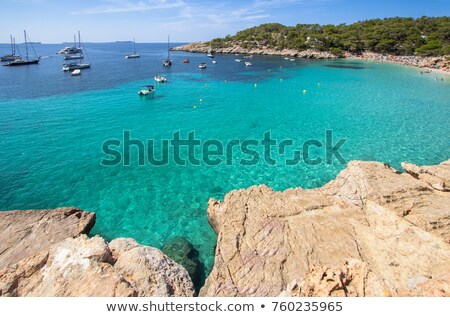 Cala Salada beach in San Antonio, in Ibiza Island, Spain Stock photo © nito