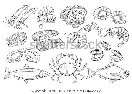 doodle vector sea food stock photo © netkov1