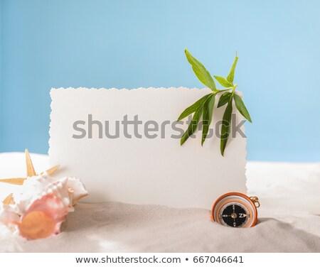 Cartão postal quente areia da praia bússola magnético mar Foto stock © stevanovicigor