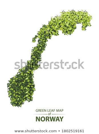 Noruega ambiental mapa grama verde ecológico natureza Foto stock © speedfighter
