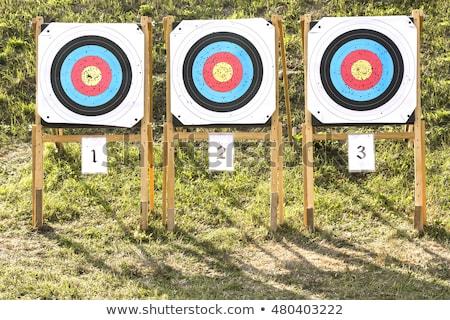 три бумаги стрельба из лука трава области Сток-фото © smuki