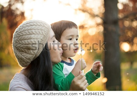 lovely woman holding and blowing on dandelion outdoors stock photo © deandrobot