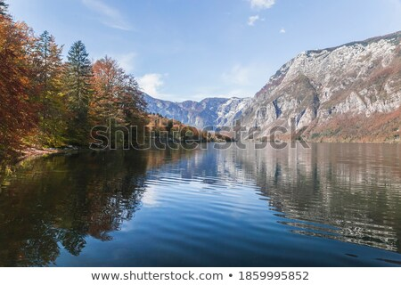 озеро Альпы поверхность парка воды гор Сток-фото © stevanovicigor