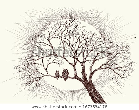 cartoon owl with a full moon vector stock photo © adrian_n