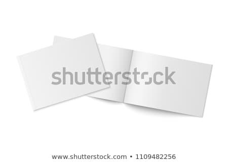Kettő üres brosúra vázlat papír kék Stock fotó © Anna_leni