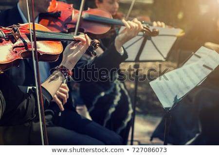 классическая музыка плакат скрипки фортепиано ключевые красный Сток-фото © bluering
