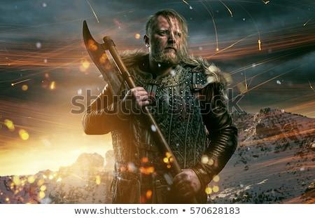 férfi · viking · illusztráció · igazság · erő · rajz - stock fotó © jossdiim