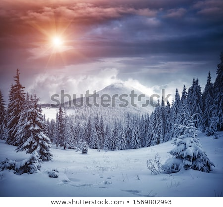 winter landscape with mountains sunset sky snow day stock photo © victoria_andreas