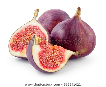 Single fresh fig fruit Stock photo © Digifoodstock
