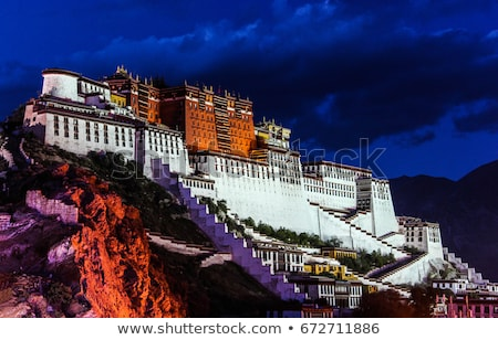 noite · palácio · tibete · famoso · histórico · edifício - foto stock © bbbar