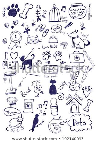 veterinarian with cat in hands vector illustration stock photo © rastudio