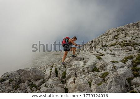 Park Szlovénia fantasztikus panoráma ködös völgyek Stock fotó © Leonidtit