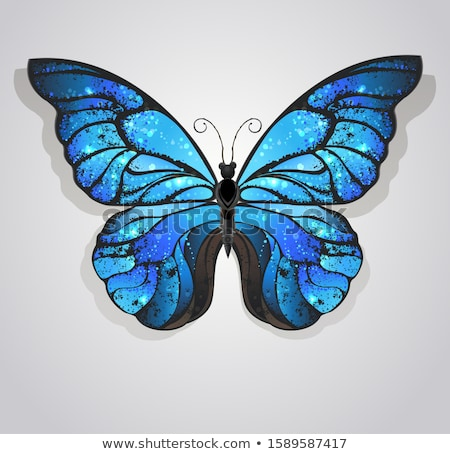 Artistic Morpho and monarchs Stock photo © blackmoon979
