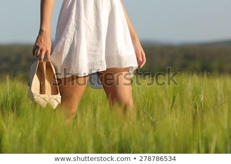 脚 · 女性実業家 · 高い · ストッキング · ハイヒール · 白 - ストックフォト © is2