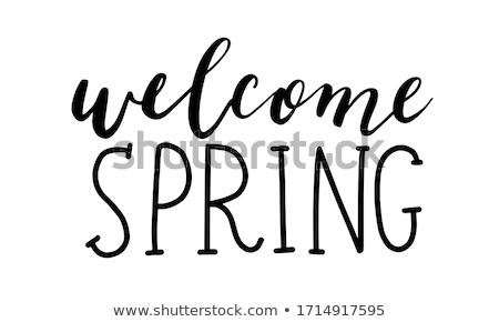 Widziane wiosną dekoracji ptaszyna charakter projektu Zdjęcia stock © zsooofija