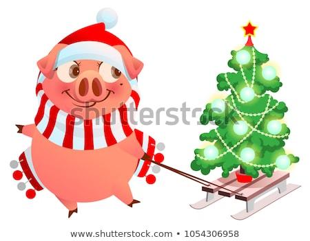 Rosa porco símbolo ano diversão árvore de natal Foto stock © orensila