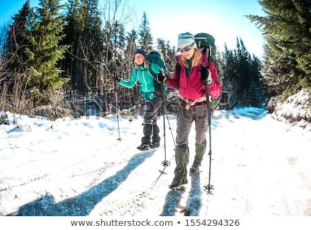 Amis trekking neige arbre montagne hiver Photo stock © IS2