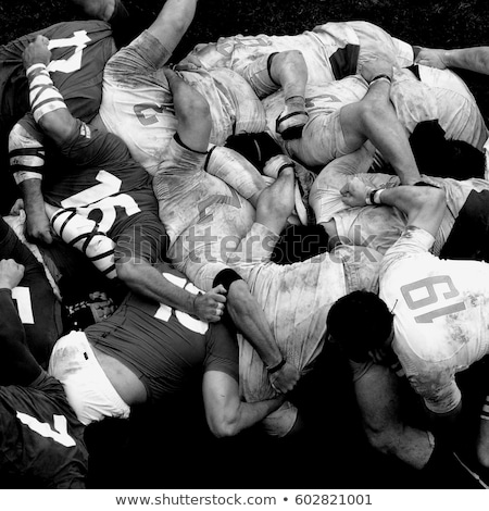 Rugby players in a scrum Stock photo © IS2