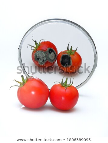 Food Fraud Stock photo © Lightsource