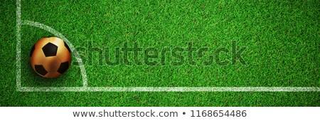 Arany futball közelkép kilátás tőzeg futball Stock fotó © wavebreak_media
