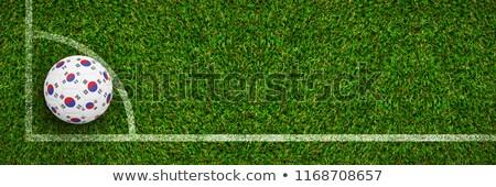 Futebol Coréia do Sul cores grama verde futebol natureza Foto stock © wavebreak_media