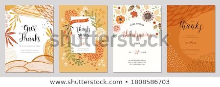 Dankzegging ontwerp ingesteld twee groet kaarten Stockfoto © ivaleksa