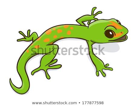 Dronken cartoon leguaan illustratie naar glimlachend Stockfoto © cthoman