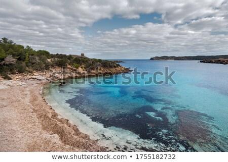 Suszy wodorost morze Śródziemne wody tle lata Zdjęcia stock © lunamarina