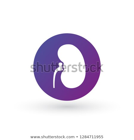 simple kidneys purple gradient icon in circle symbol and sign vector illustration isolated on white stock photo © kyryloff