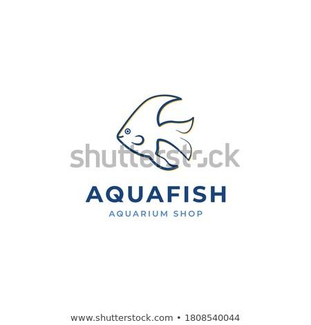 Cor vintage aquário compras emblema peixe Foto stock © netkov1