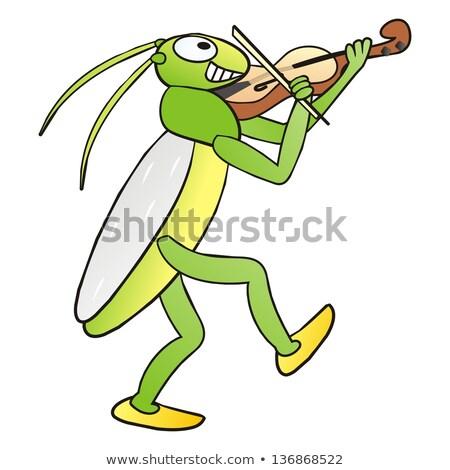 Grasshopper Fiddler Drawing  Stock photo © patrimonio