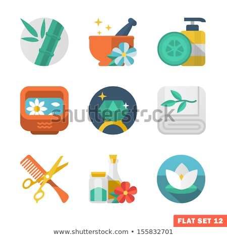 Water Well flat vector icon Stock photo © nosik
