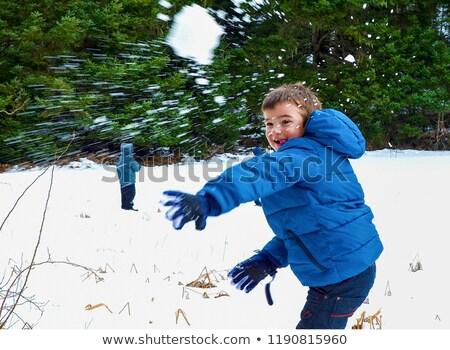 Fiú hógolyó illusztráció gyermek hó jókedv Stock fotó © adrenalina