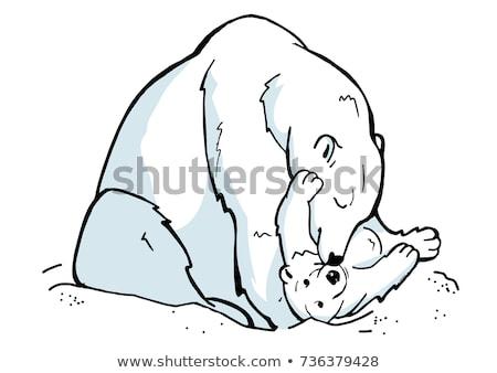 Dibujado a mano oso polar cute tener establecer madre Foto stock © marish