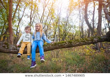 ストックフォト: Little Brother And His Sister Sitting On The Tree In The Fall