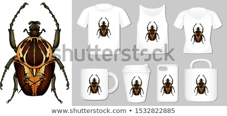 Graphic of beetle on different product templates Stock photo © bluering