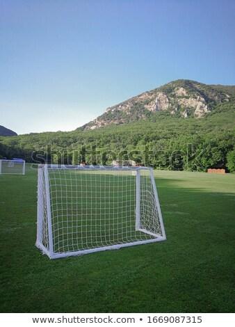 フットボールの競技場 地形 サッカー 背景 山 ツリー ストックフォト © ElenaBatkova