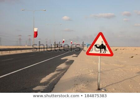Катар шоссе знак зеленый облаке улице знак Сток-фото © kbuntu