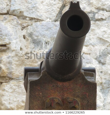 Cannon on the Wall Stock photo © rognar