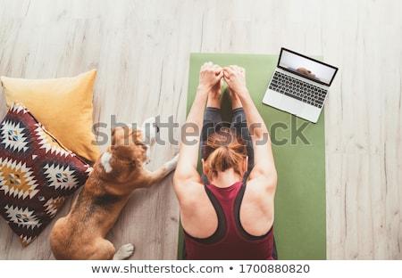 Mulher jovem laptop bastante jovem morena datilografia Foto stock © JamiRae
