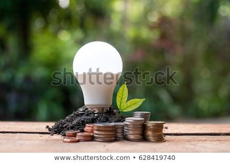 Ampul yalıtılmış beyaz ışık yeşil Stok fotoğraf © Borissos