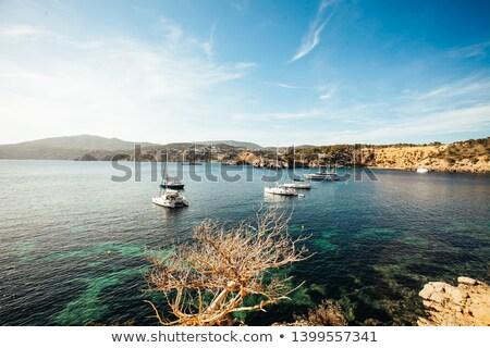 синий · океана · морем · мнение · моторная · лодка · яхта - Сток-фото © lunamarina